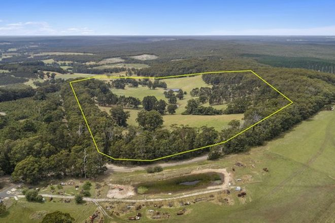 Picture of 279 Mcalpine Road, CARRAJUNG LOWER VIC 3844