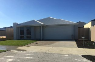 Picture of 15 Majorelle Way, Karnup WA 6176