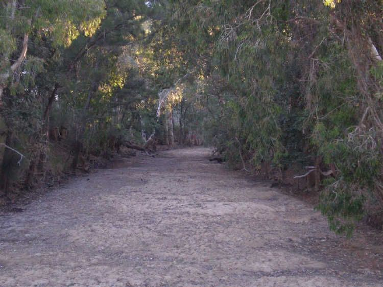 66 Roaches Road, Bowen QLD 4805, Image 1