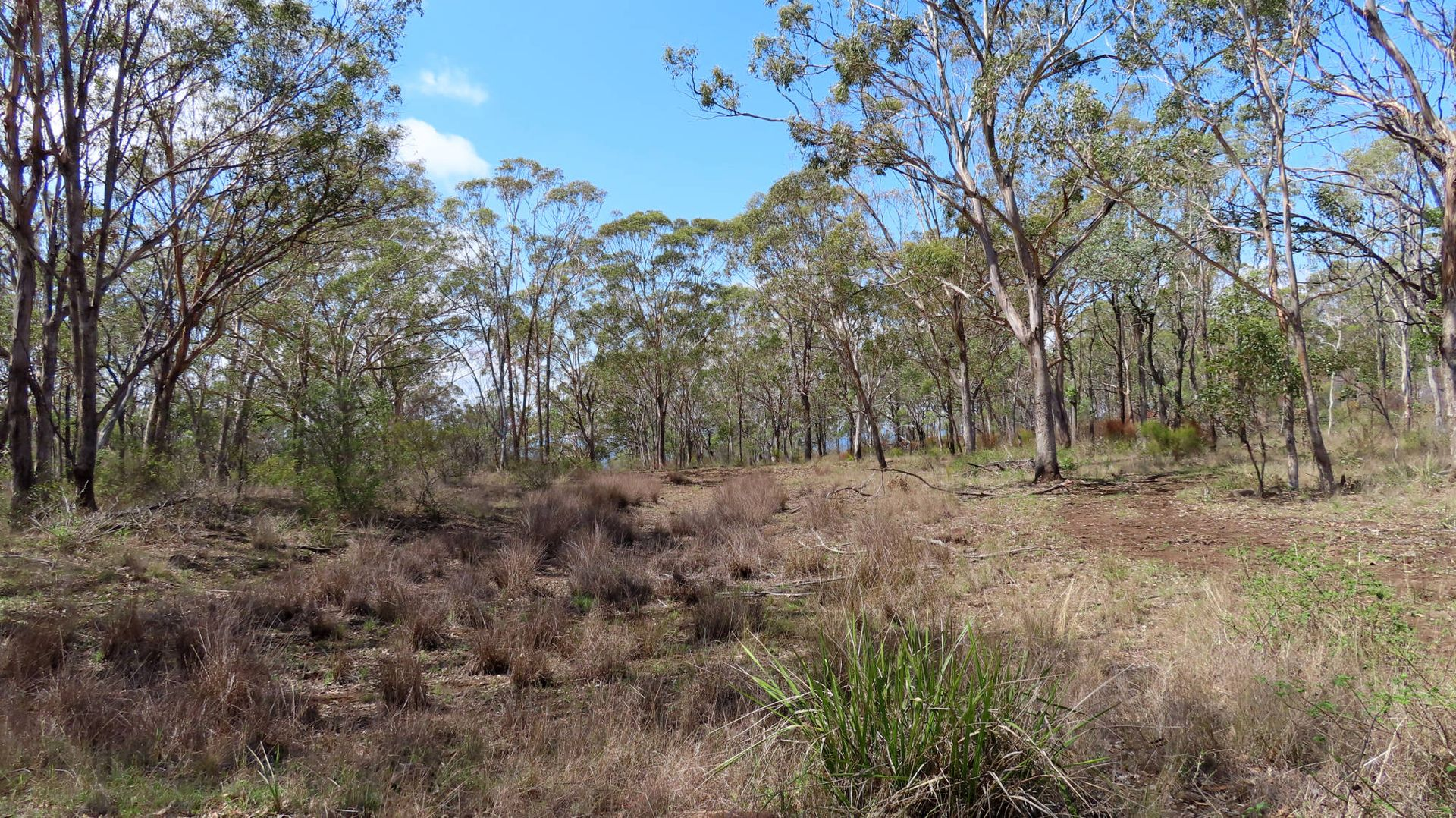 West Haldon QLD 4359, Image 2