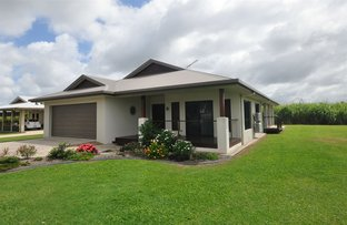 Picture of 21 Pindar Street, Ingham QLD 4850
