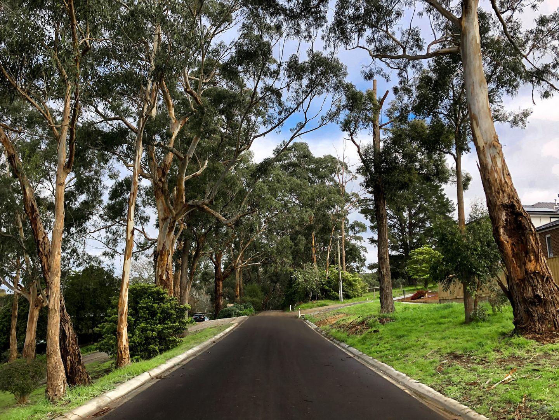 24 Barker Road, Garfield VIC 3814, Image 1