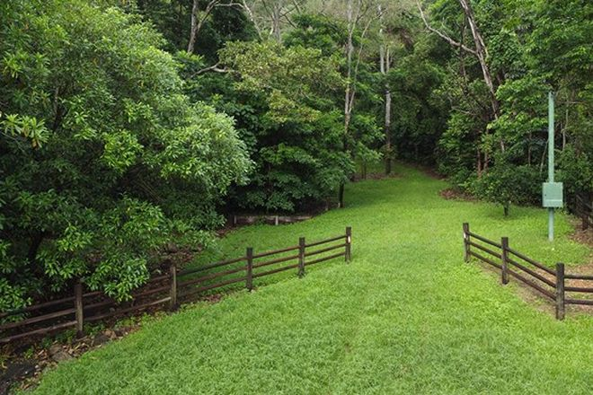 Picture of Lot 4 Dagmar Close, LOWER DAINTREE QLD 4873
