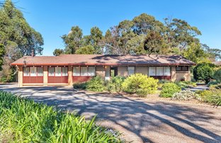 Picture of 542 Ackland Hill Road, Cherry Gardens SA 5157
