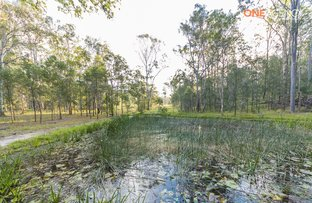 Picture of 249 Cedar Party Road, Taree NSW 2430