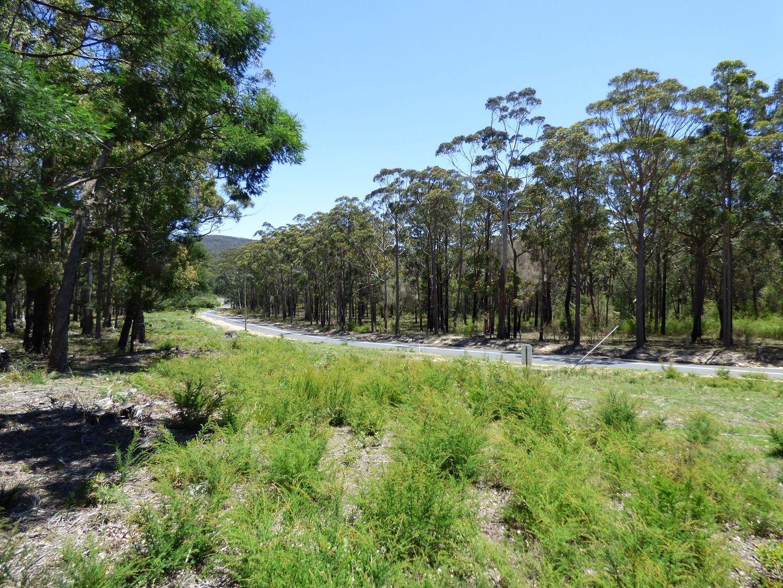 LOT C Gleeson Road Wonboyn Via, Eden NSW 2551, Image 2