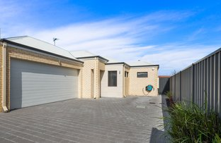 Picture of 28c Seaforth Road, Balcatta WA 6021