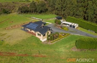 Picture of 149 Youngs Road, Irishtown TAS 7330