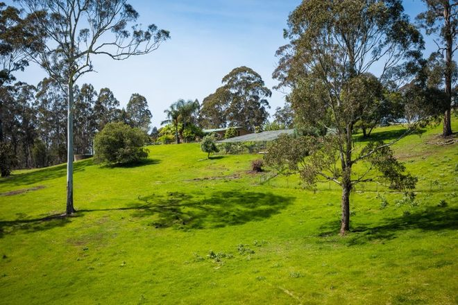 Picture of 355 Oaklands Rd, Bald Hills Via, PAMBULA NSW 2549