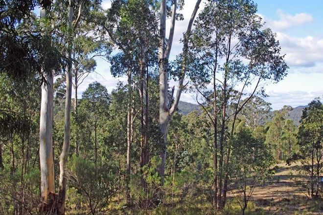 Picture of Lot 380 New Station Creek Road, WYNDHAM NSW 2550