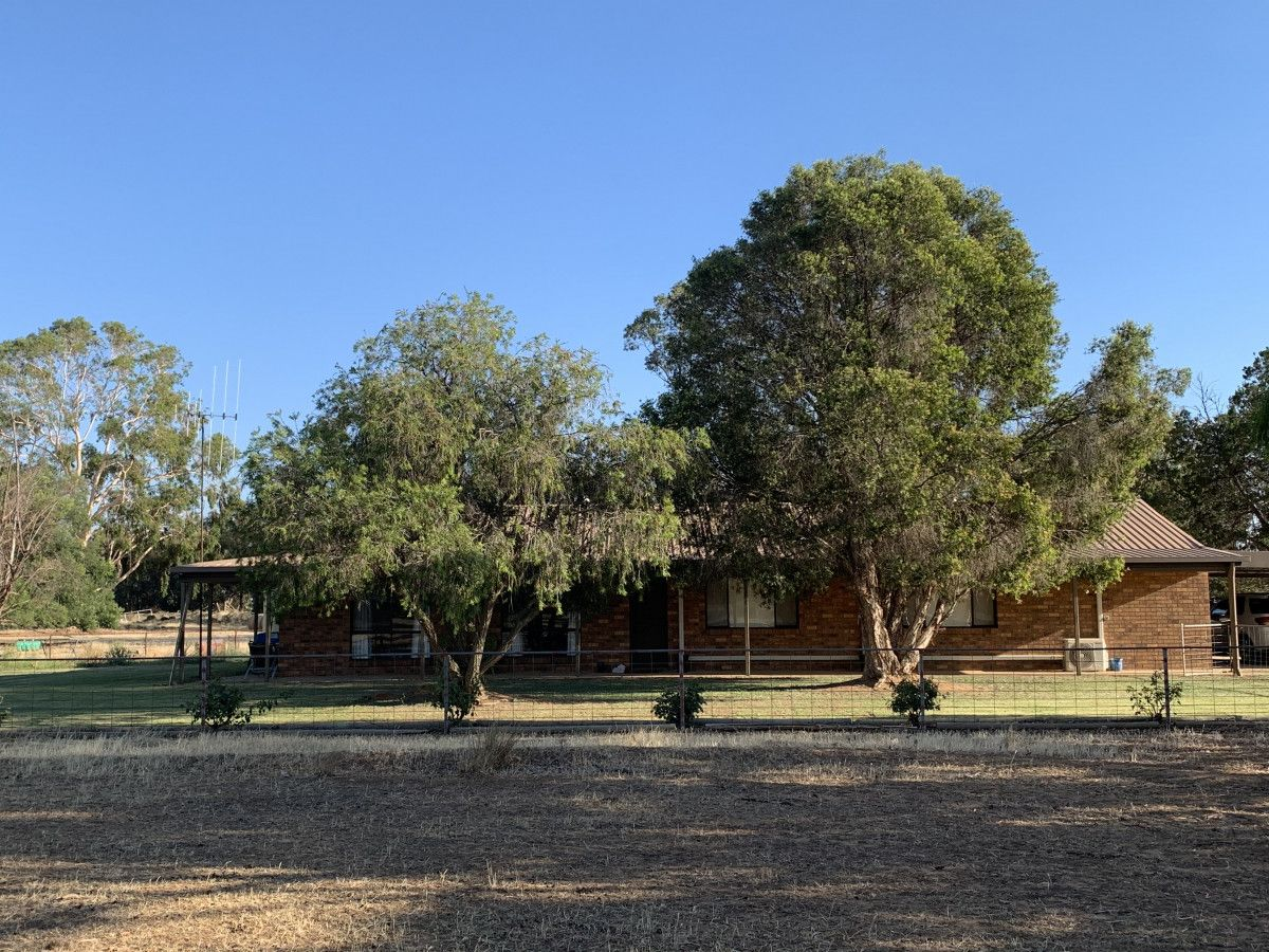 6176 Barham Road, Wakool NSW 2710, Image 0