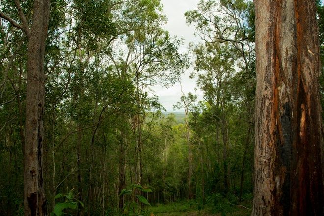 Picture of 396-402 Miller Road, LOGAN VILLAGE QLD 4207