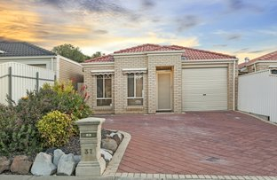 37 Ormond Avenue, Clearview SA 5085