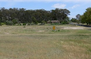 Picture of 40 Wallangarra Road, Stanthorpe QLD 4380