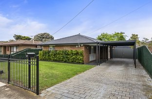 Picture of 17 Kurrajong Crescent, Melton South VIC 3338