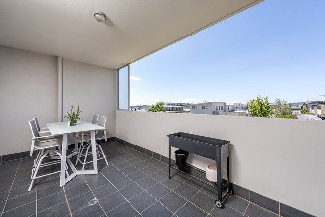Picture of 172/39 Catalano Street, WRIGHT ACT 2611