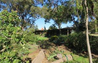 8 Fitzroy, Bunnaloo NSW 2731