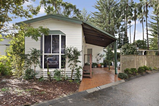 Picture of 4 Norfolk Parade, NORTH NARRABEEN NSW 2101