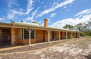 Picture of 79 Vines Avenue, The Vines WA 6069
