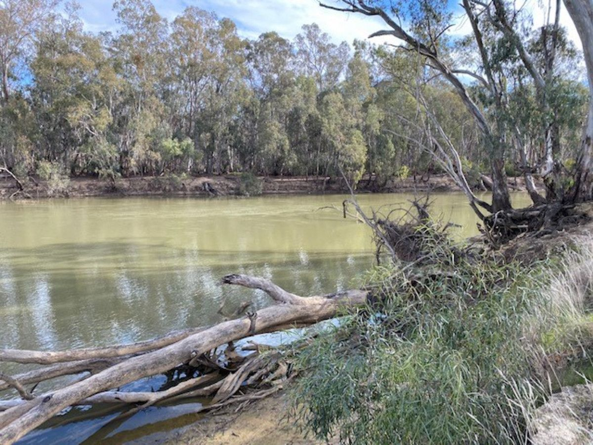 15 Riverview Drive, Barham NSW 2732, Image 1