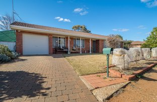 Picture of 19 KENSINGTON AVENUE, Dubbo NSW 2830