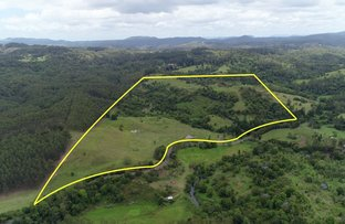 Picture of 345 Blue Knob  Road, Nimbin NSW 2480