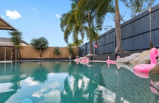 Picture of 30 Satinwood Place, Mountain Creek QLD 4557