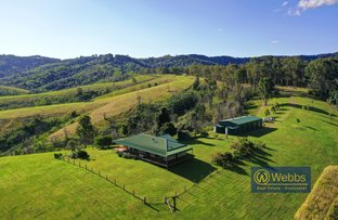 Picture of 205 Afflecks Road, Gloucester NSW 2422