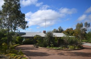 Picture of 400 Chitty Road, Bakers Hill WA 6562