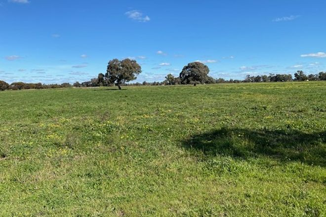Picture of LOT 11 MOONEE SWAMP ROAD, DENILIQUIN NSW 2710