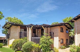 Picture of 30/21 Eastern Valley Way, Northbridge NSW 2063
