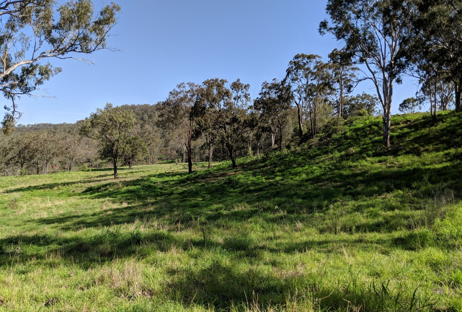 West Haldon QLD 4359, Image 1