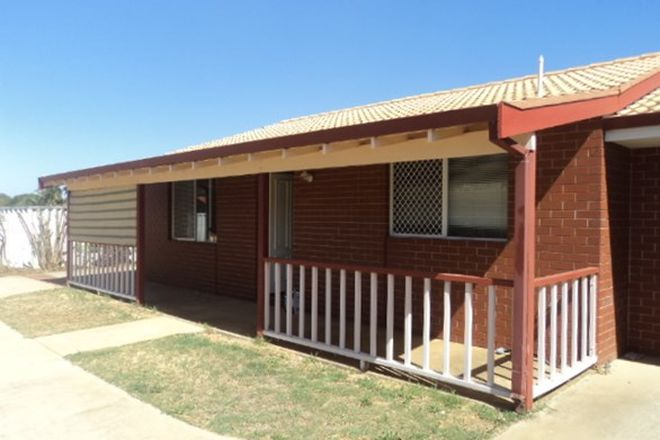 Picture of 3/58 Lawley Street, SPALDING WA 6530
