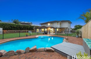 Picture of 8 Beak Court, Birkdale QLD 4159