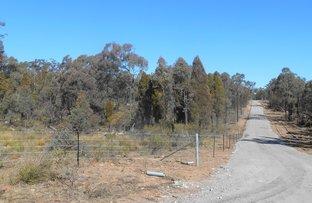 Picture of Lot 28 via 497 HULKS ROAD, Merriwa NSW 2329