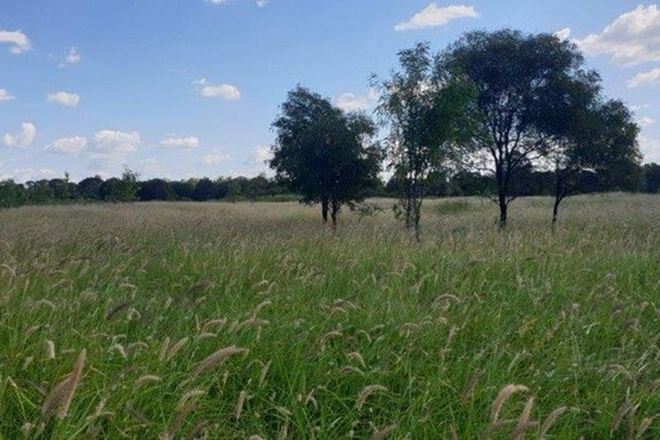 Picture of 14425 Capricorn Highway, DINGO QLD 4702