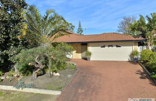 Picture of 45 Wardell Loop, Dudley Park WA 6210
