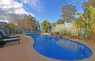 Picture of 15 Pinnibar Court, Thurgoona NSW 2640