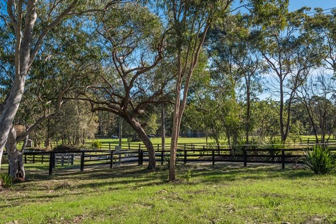 Picture of 131 Morgans Road, MOUNT WHITE NSW 2250
