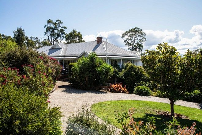 Picture of 56 Strochnetters Road, RELBIA TAS 7258