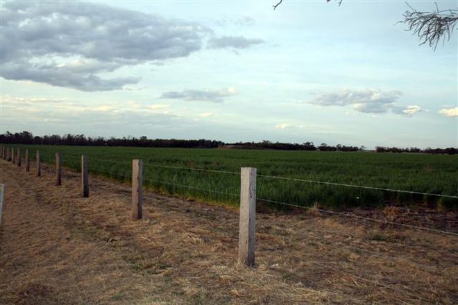 Picture of DALBY QLD 4405