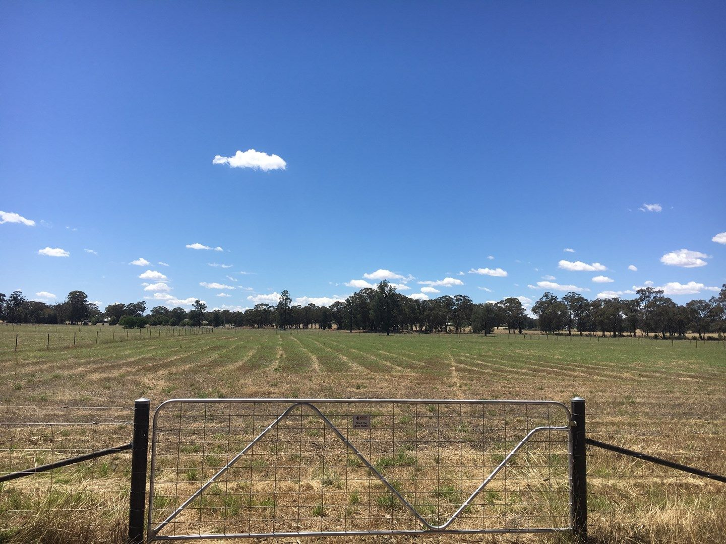 Lot 3 Mansfield Road, Temora NSW 2666, Image 0