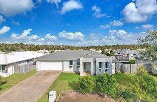 7 Riceflower Court, Ningi QLD 4511