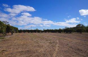 Picture of Lot 9 Malone Road, Mareeba QLD 4880