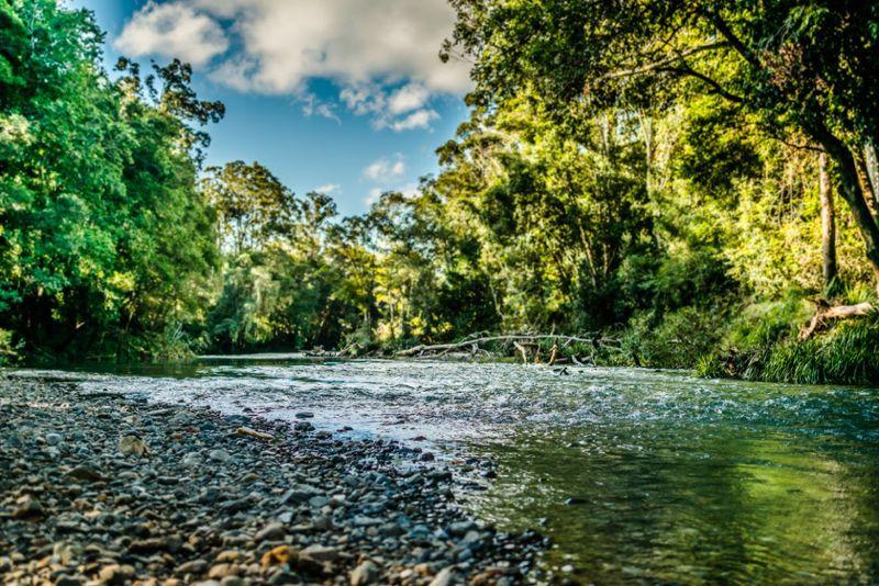 520 Roses Road, Bellingen NSW 2454, Image 0