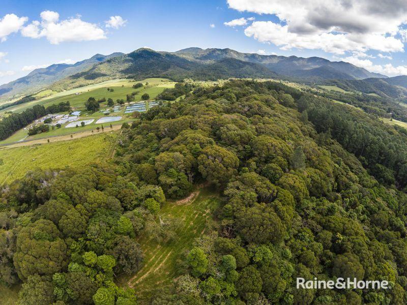 Lot 1 Mossman Mt Molloy Road, Julatten QLD 4871, Image 0