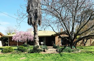 Picture of 107 River St, Corowa NSW 2646