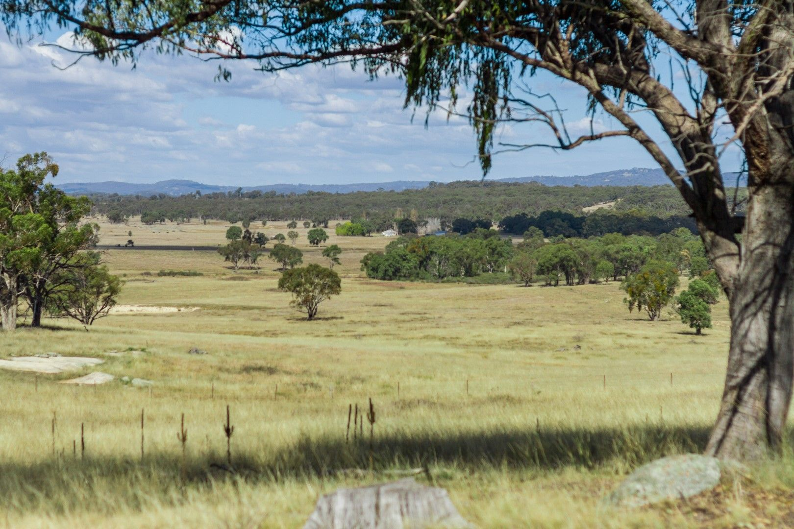 2826 Kingstown road, Uralla NSW 2358, Image 1
