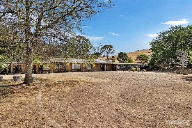 Picture of 414 Trial Hill Road, PEWSEY VALE SA 5351