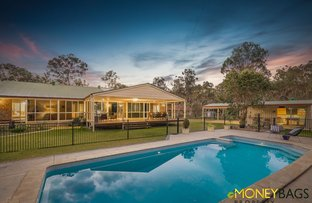 Picture of 6 Woolshed Court, Flagstone QLD 4280
